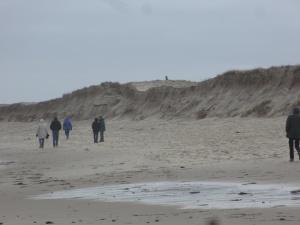 Nauset Beach2